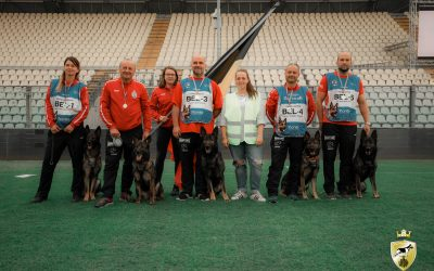 Foto's WUSV WK Modena 2019